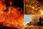 آتش سوزی گسترده و تخلیه ساکنان ایالت کالیفرنیا+تصاویر