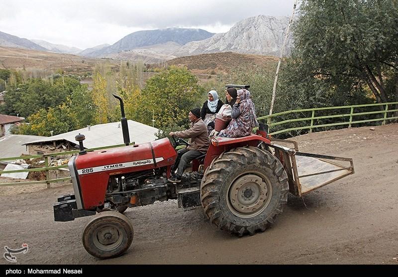 شغل بیشتر مردم وامنان کشاورزی ، باغداری و دامداری است.بیشترین درآمد مردم حاصل از کاشت زعفران میباشد. در این روستا 225 هکتار زیر کشت زعفران بوده که 45 هکتار آن در سال زراعی جاری تبدیل به باغ زعفران شده است.