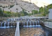 پروژههای پرورش ماهیان خاویاری و گرمآبی هفته دولت در گیلان افتتاح میشود