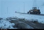 """ورود """"سردچال قطبی"""" به کشور؟!/ """"روزهای شگفتانگیز برفی"""" در انتظار مناطق شمالی کشور"""