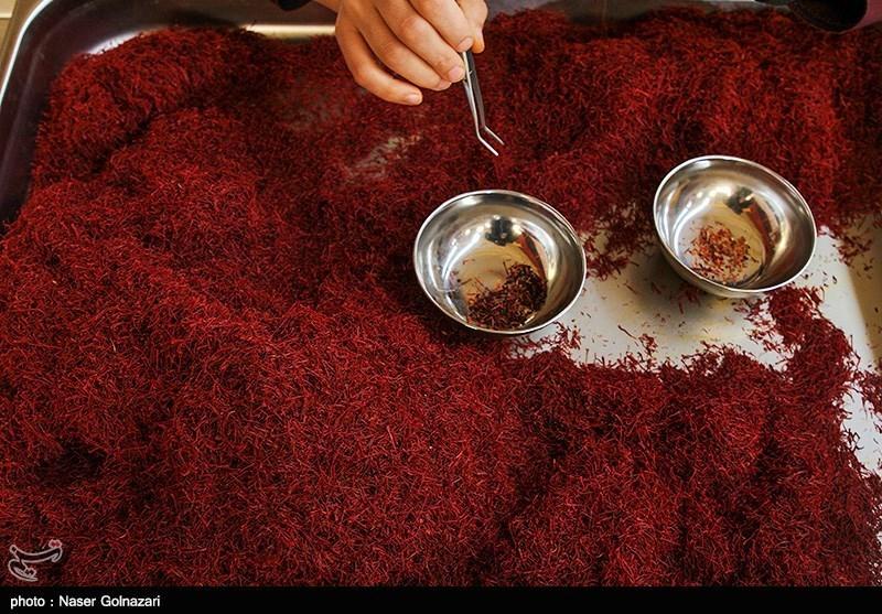 انعقاد ٤٧ هزار قرارداد آتی زعفران نگین در بورس کالا