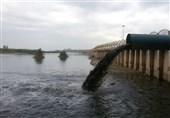ساماندهی بزرگترین رود ایران در پیچ وخم شعار/ ناکارآمدی وزارت نیرو در جلوگیری از آلودگی کارون