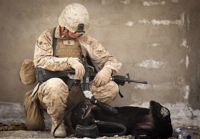 """روزانه 24 نظامی آمریکایی با """"خودکشی"""" جان خود را از دست میدهند! + تصاویر"""