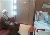 مدیر حوزههای علمیه سراسر کشور از آیتالله حسینی بوشهری عیادت کرد