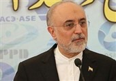 Nuclear Chief Warns of Reaction to IAEA Resolution against Iran