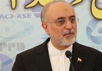 توضیحات صالحی درخصوص حادثه نطنز به کمیسیون امنیت ملی
