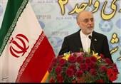 صالحی: آماده انتقال تجربیات هستهای ایران به کشورهای حوزه خلیج فارس هستیم / بهرهبرداری از راکتور دوم و سوم بوشهر تا سال 1404 و 1406
