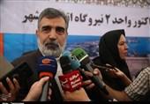 کمالوندی: نیروگاههای دوم و سوم هستهای بوشهر 3150 مگاوات برق تولید میکند