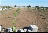 اماواگرهای تخریب زمینهای روستای علیآباد توسط جهاد کشاورزی پاکدشت + فیلم