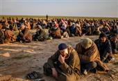 گزارش| ترکیه و سیاست بازگرداندن داعشیها