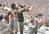 شکارچی و شکاربان این بار در کنار هم/ پروژه همکاری شکارچی و شکاربان در خراسان جنوبی رقم خورد