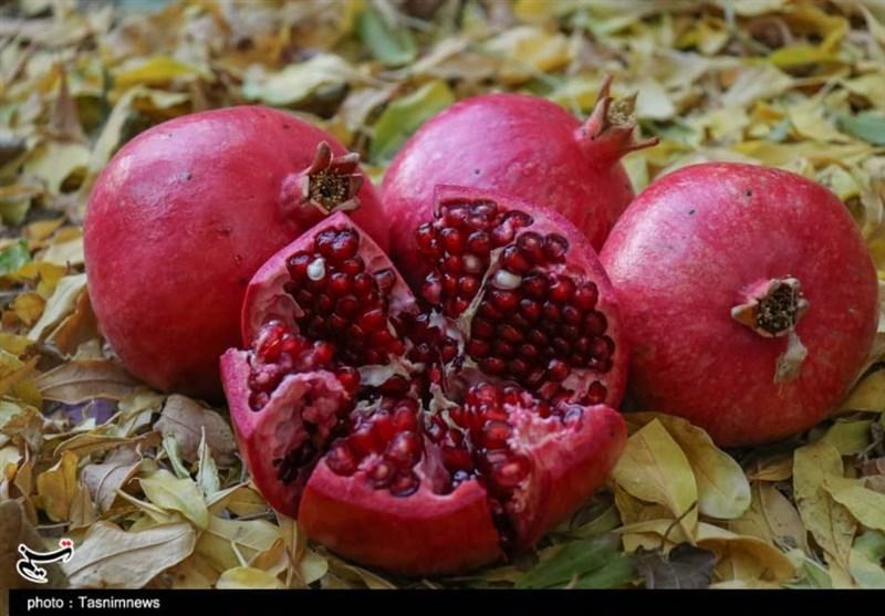 """دستورالعمل جامع طب سنتی برای مصونیت از بیماری در """"فصل پاییز"""" + دستورات غذایی"""