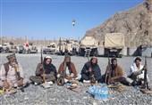 ادامه فشارهای طالبان؛ 82 عضو دیگر داعش تسلیم دولت افغانستان شدند
