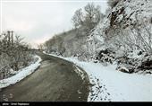 هواشناسی ایران 99/7/14|بارش باران و برف 5 روزه دربرخی مناطق کشور