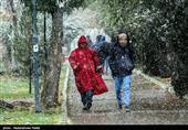 هواشناسی ایران 99/7/15| باران و برف 4 روزه در اکثر مناطق کشور/ هوای شمال 8 درجه سرد میشود