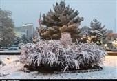 مسئولین شهری زنجان توان مدیریت بارش برف را دارند؟