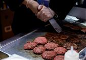 رسوایی گوشتهای آلوده در آلمان؛ 25 نفر جان خود را از دست دادند