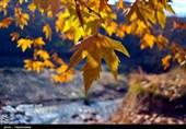 خراسان شمالی| طبیعت پائیزی روستای گردشگری مهنان به روایت تصاویر