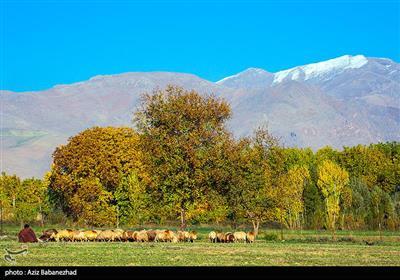 طبیعت پاییزی شهر الشتر - لرستان