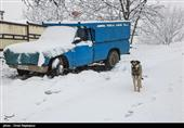 هواشناسی|آغاز بارش برف و باران از چهارشنبه/ افزایش آلاینده های جوی در شهرهای صنعتی