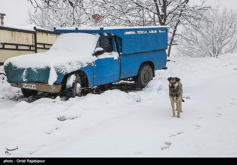هواشناسی ایران 1398/09/12| پیشبینی برف و باران 5روزه در اکثر مناطق کشور