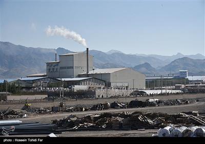کارخانه کاشی و سرامیک فرزاد در خراسان جنوبی
