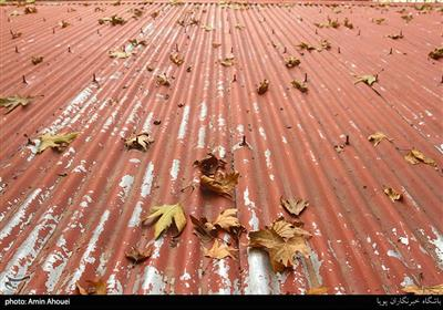 طبیعت پاییزی تهران