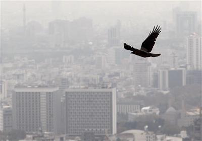 افزایش ۲ میلیون تومانی متوسط قیمت مسکن در تهران/کاهش ۴.۳ درصد معاملات در خرداد ۹۹