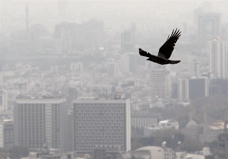 زلزله تهران، معاملات مسکن را کم میکند/کاهش قیمت مسکن در راه است