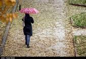 افزایش بیش از 60 درصدی بارندگی در استان فارس + جدول میزان بارشها