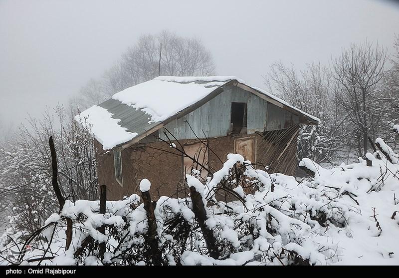هواشناسی ایران 1398/09/15  پیش بینی برف و باران تا روز سه شنبه در اکثر مناطق کشور
