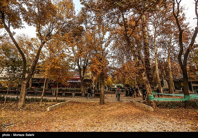 Festival of Alluring Colors in Isfahan's Chahar Bagh
