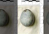 """کشف تخم مرغهای 1700 ساله در شهر """"ایلزبوری"""" انگلیس"""