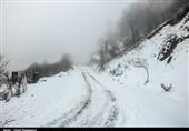 بارش برف در محور کرج چالوس/ تردد بدون زنجیر چرخ ممنوع شد
