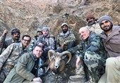 لزوم ممنوعیت گردشگری شکار و اصلاح قانون شکار و صید + تصاویر