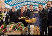 مدیرعامل منطقه آزاد کیش برکنار شد/ انتصاب سرپرست توسط مشاور روحانی