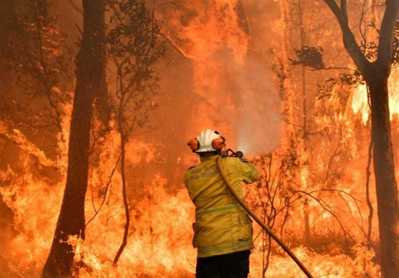 Toxic Bushfire Haze Blankets Eastern Australia