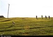 طبیعت پاییزی ایذه بهشت خوزستان