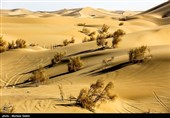 Varzaneh Desert: One of the Most Beautiful Deserts in Iran