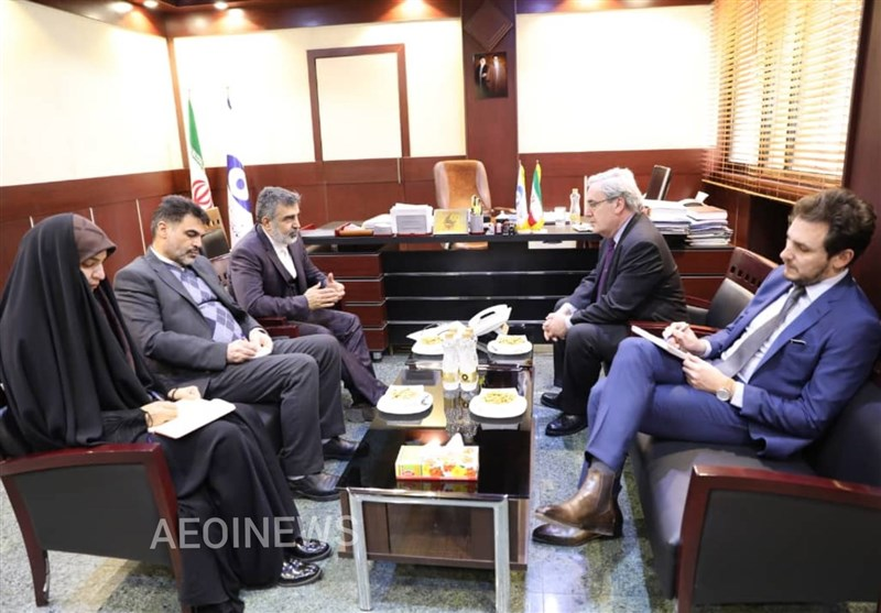 Iranian Nuclear Official, French Envoy Discuss JCPOA