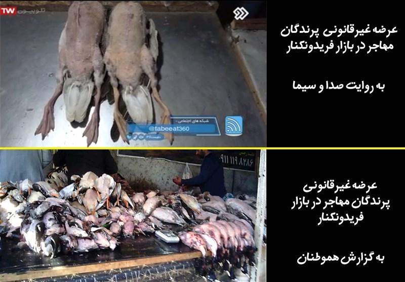 سازمان محیط زیست , صدا و سیمای جمهوری اسلامی ایران ,