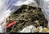 تلاش ناکام زندانی برای ورود موادمخدر به داخل زندان
