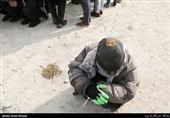 جمعآوری 1000 معتاد متجاهر از سطح شهر تهران/ فقط یک مورد ابتلا به کرونا در بین 600 تست