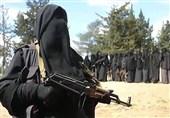 دستگیری یک زن عضو داعش در آلمان