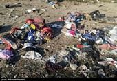 تازهترین اخبار از سقوط هواپیمای اوکراینی در پرند| هیچ مسافری زنده نمانده / اجساد در منطقه وسیعی پراکنده شده است