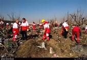 جعبه سیاه هواپیمای مسافربری اوکراینی پیدا شد + فیلم