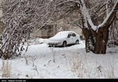 هواشناسی ایران 98/10/22|هشدار کاهش 12 درجهای دما/ بارش برف 2 روزه در 7 استان