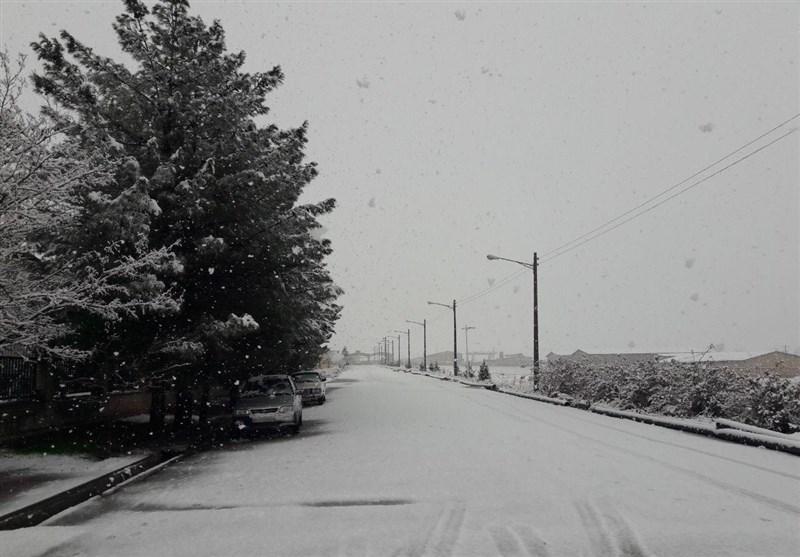 آماده باش نیروهای امدادی به دنبال بارش برف و باران شدید در خراسان جنوبی/ مدارس برخی از شهرستانها تعطیل شد + فیلم