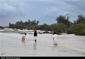 سیستان و بلوچستان| 6 نفر گرفتار در سیلاب «زرآباد» با بالگرد ارتش نجات یافتند