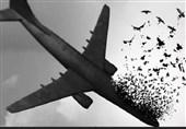 مراسم بزرگداشت شهدای هواپیمای مسافربری در تهران برگزار میشود